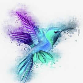 Humming Bird by Ian Mitchell