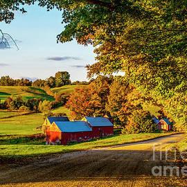 Jenny Farm by Wei Tang