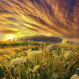 Let It Be by Phil Koch
