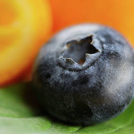 Macro shot of blueberry by Ivan Mikhaylov