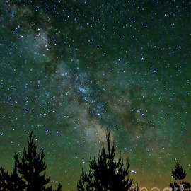Milky Way - Sandlake - Oregon by Artistic Oregon Photo