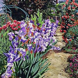 Monet's Irises by David Lloyd Glover