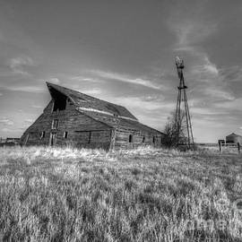 Montana Barn by Steve Brown