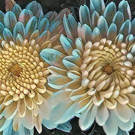 Mums of a Different Color by Bruce Bley