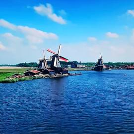 Netherlands... by Kusum Lata Verma
