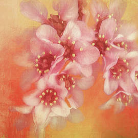 In Praise of Spring by Terry Davis