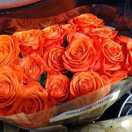 Orange Crush  by Charlotte Gray