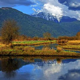 Pitt Lake Valley, provincial park   by Alex Lyubar