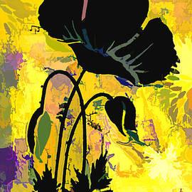 Poppy Abstract by Trudee Hunter
