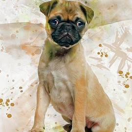 Pug Art by Ian Mitchell
