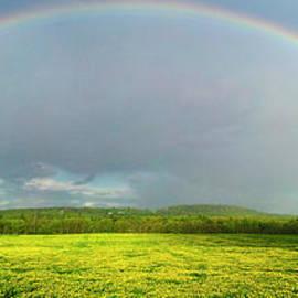 Rainbow by Alana Ranney