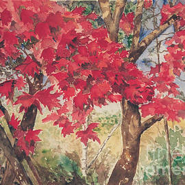 Red Leaves by Christine Lathrop
