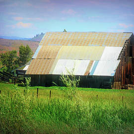 Rural Barn by Cathy Anderson