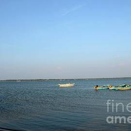 Several blue and yellow boats moored anchored in waters of Jaffna Sri Lanka by Imran Ahmed