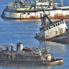 Ship Wrecked in Montevideo, Uruguay by Barbara Ebeling