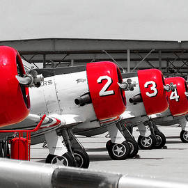 Show Birds - Geico T-6 Texans, the Skytypers by Matt Richardson