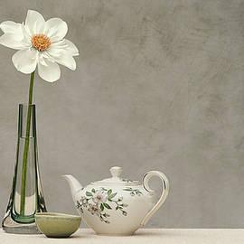 Single Bloom by John Fotheringham