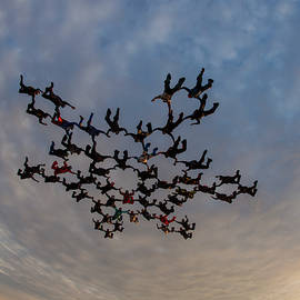 Skydiving Big Group In Free Fall by Rick Neves