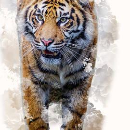 Smoking Tiger by Darren Wilkes
