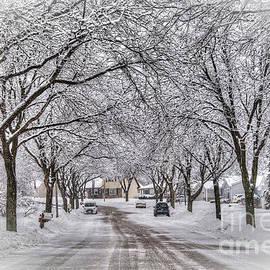 Snow Day by Deborah Klubertanz