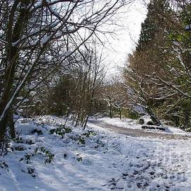 Snow On The Island 2 by Lesley Evered