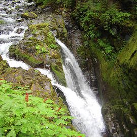 Sol Duc Falls by William Moore