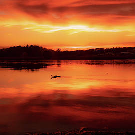 Soothing Sunset by Linda Howes