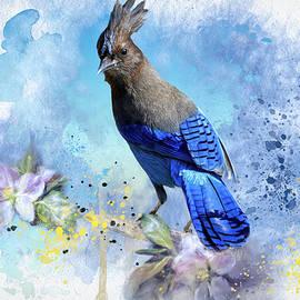 Steller Spring by Donna Kennedy