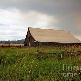 Summer Barn by Idaho Scenic Images Linda Lantzy