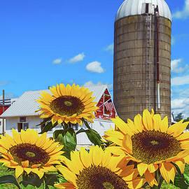 Sunflowers and Farm Silo by Regina Geoghan