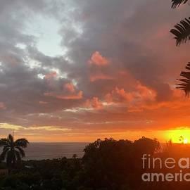 Sunset Beauty by Karen Nicholson