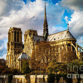 The cathedral Notre dame de Paris. by Cyril Jayant