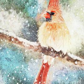 The Snow Queen by Tina LeCour