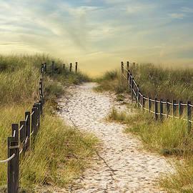 Through the Dunes by Robert Anastasi