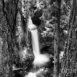 Toketee Falls Oregon by Bob Christopher