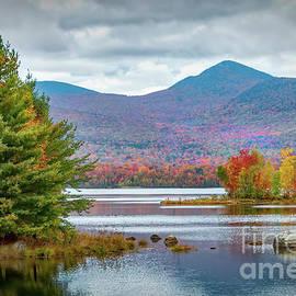 Vermont Beauty by Viv Thompson