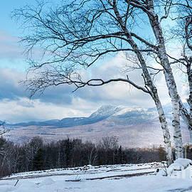 Weld Maine by Alana Ranney