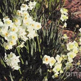 Narcissus by Katherine Erickson