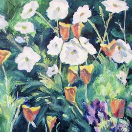 Wild Poppies by Robert Gerdes