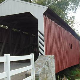 Willows Covered Bridge  by Charlotte Gray