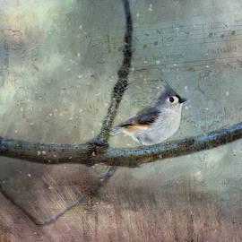 Winter Bird Song by Terry Davis