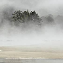 Yachats Bay Mist 8385-090821-2 by Tam Ryan