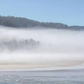 Yachats Bay Mist - Oregon 8384-090821-3 by Tam Ryan