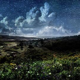 1001 Nights by Paulo Viana
