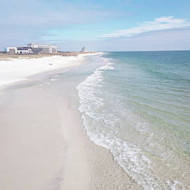 11118 Gulf Shores National Park by Pamela Williams