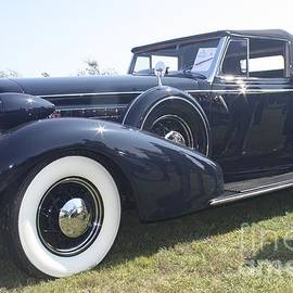 1934 Cadillac Convertible Coupe by Barbra Telfer