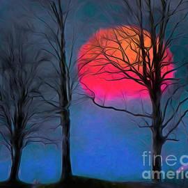 As The Sun Sets by Edmund Nagele