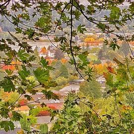 Autumn Mist 2 by Jerry Abbott