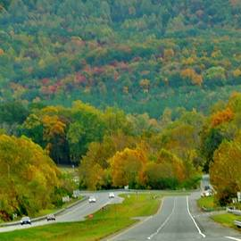 Autumn Road by Arlane Crump