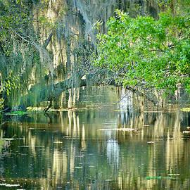 Banana Creek Reflections by Carol Bradley